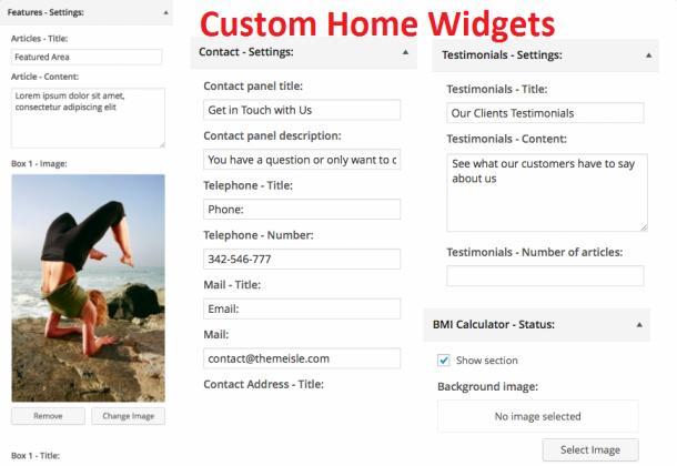 Homepage Widgets - Woga PRO ThemeIsle