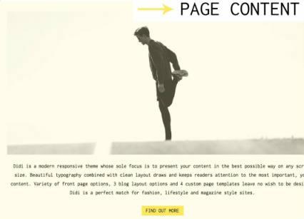 Page Content - Didi Theme