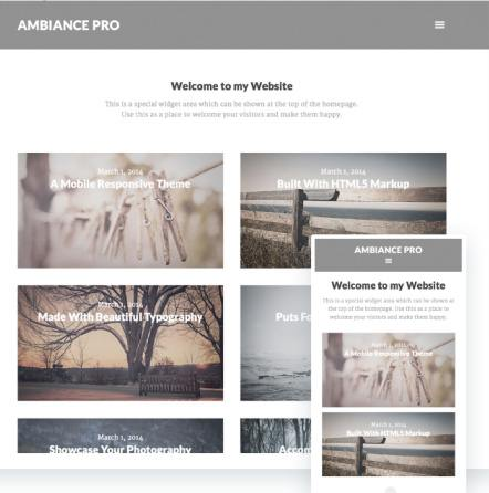 Responsive Gensis Theme - Ambiance Pro