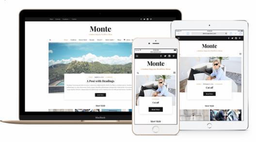 Responsive Magazine Theme - Monte