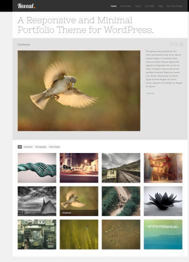 ThemeTrust Reveal : Best Responsive Portfolio WordPress Theme