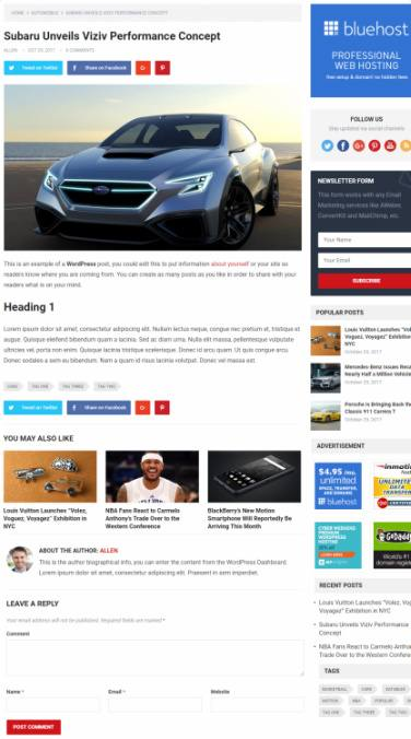 Blog Post Features - Standard HappyThemes