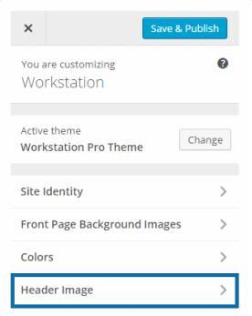 Customizer Theme Options - Workstation Pro