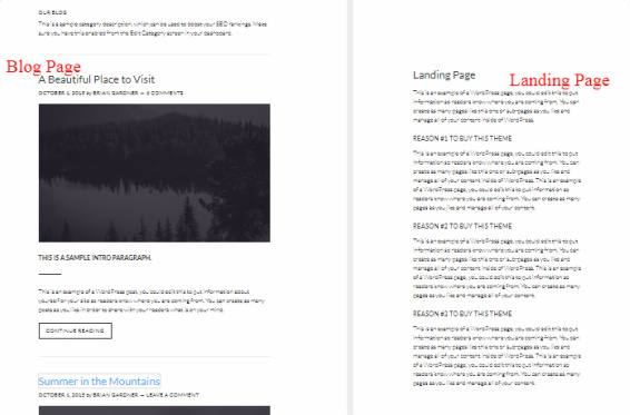 Blog Landing Page - Atmosphere Pro for Business