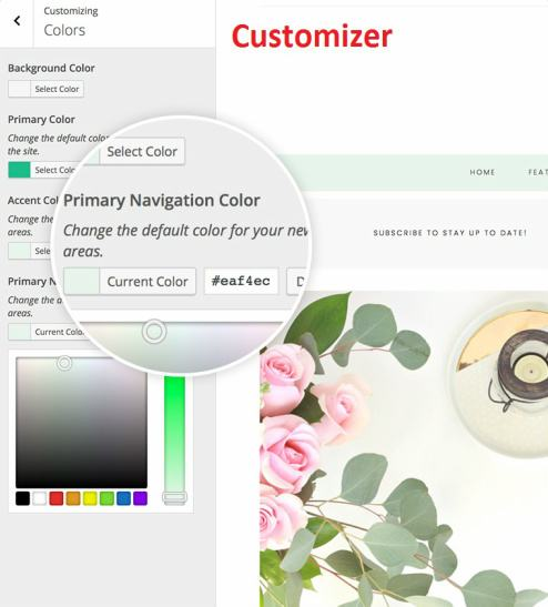 Customizer Options - Tickled Pink Theme