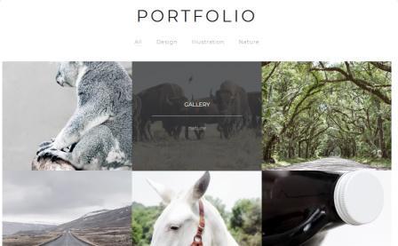 Portfolio Page - Montblanc TeslaThemes