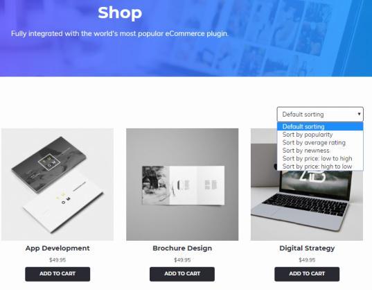 WooCommerce Shop - Studio Pro Theme
