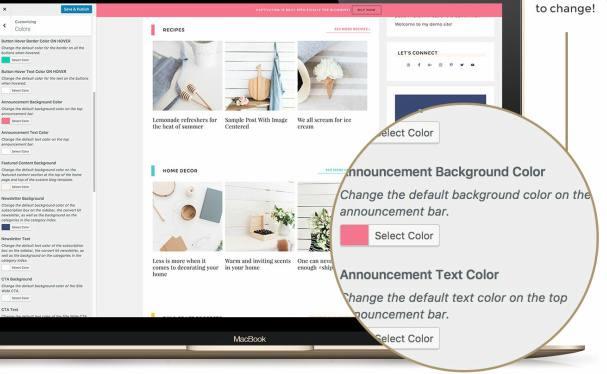Customizer Styling Options - Captivating
