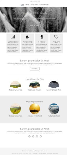 Minus Thrive Themes - Business WordPress Theme