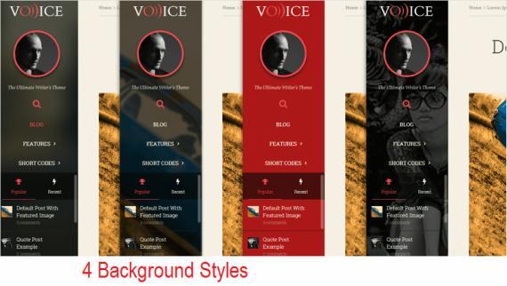 Sidebar Styles - Voice Thrive Themes