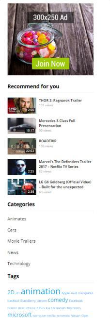 Sidebar Widgets - FastVideo Video Theme