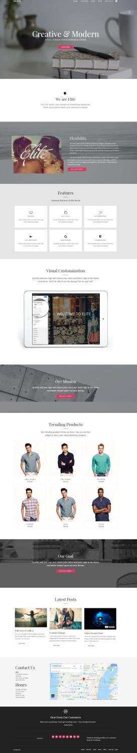 Elite Business/eCommerce WordPress Theme : Organized Themes