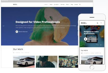 Reel Review - WPZOOM Video Portfolio Theme | GOOD ?
