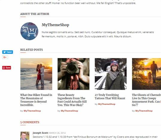 Sharing Options and Related Posts - Interactive Magazine Theme