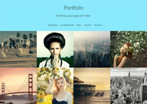Corporate Portfolio Post Type