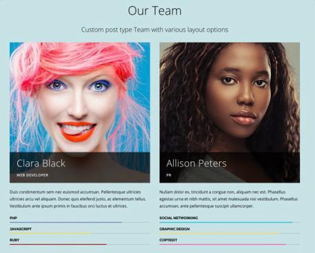 Corporate Team Post Type