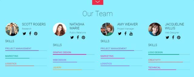 Fullpane Team Members