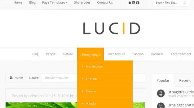 Lucid Header and Navigation