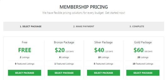 Membership Pricing Packages - Classifieds Theme Premium Press (1)