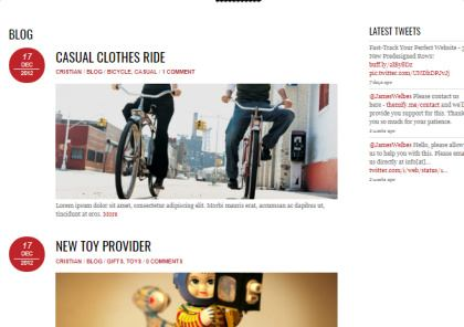 Blog - Pinshop Themify