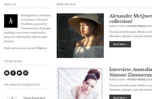 Herringbone Blog Section