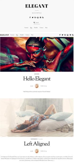 Themify Elegant : Blog/Portfolio WordPress Theme