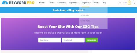 Keyword - Header Newsletter Area
