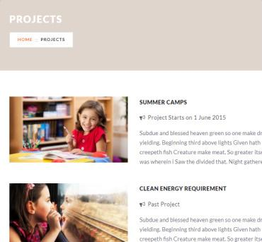 Projects - Charity Theme