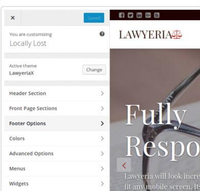 Lawyeriax Customizer Theme Options