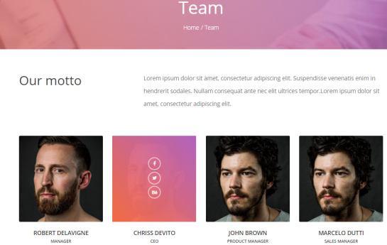 Daylight Team Page