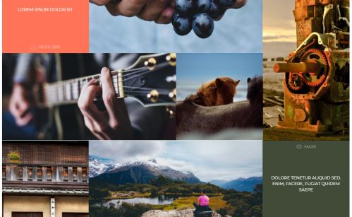 Shape Homepage Gallery