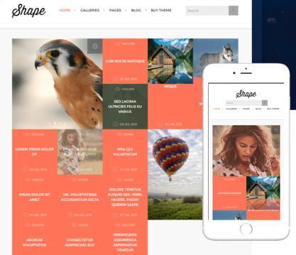 Shape Responsive Photo Gallery Theme