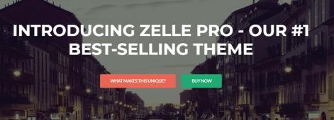 Zelle PRO Focus Section