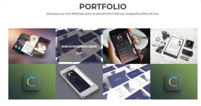 Zelle PRO Portfolio Theme