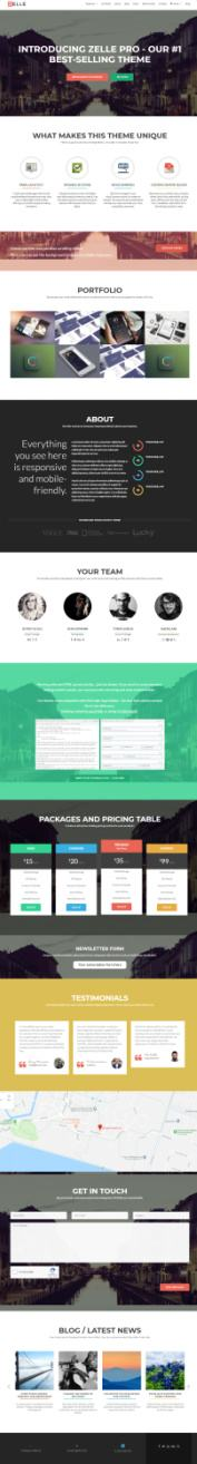 Zelle PRO ThemeIsle : Best One Page Business WP Theme
