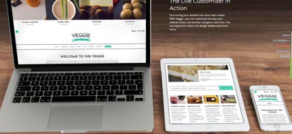 Veggie Responsive Food Magazine Theme