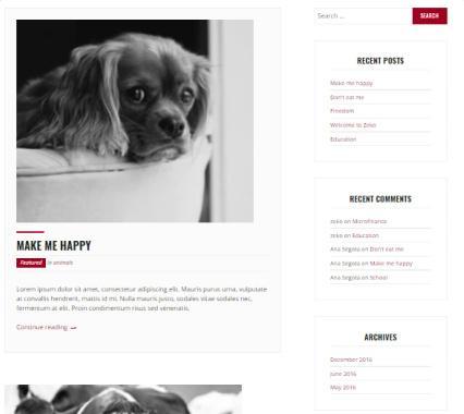 Zeko Blogging Options for Charity