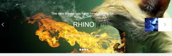 Rhino Slideshow