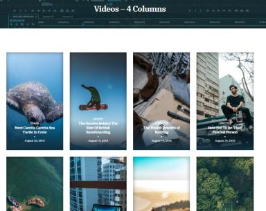 Vidiho Pro 4 Columns Video Listing Page