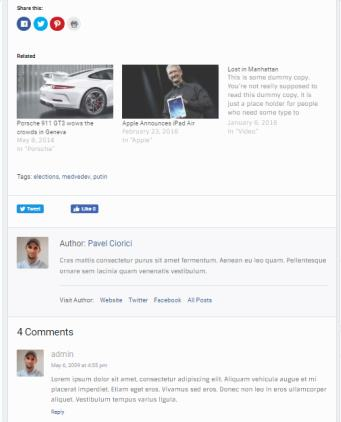 Blog Post Options - Best News Theme