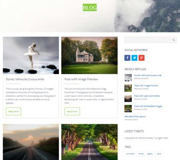 Blog for Business Marketing - CPO Themes