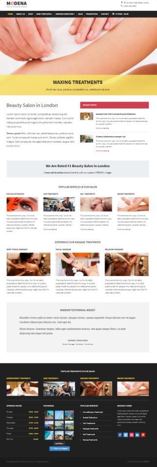 Modena WPZOOM : Best Premium Business WordPress Theme