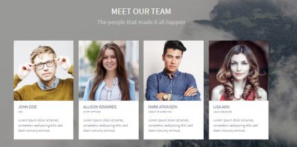 Team Section - Homepage Block
