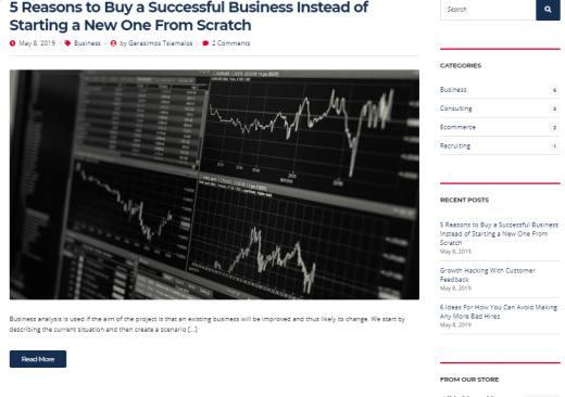 Blog Options - Business Theme