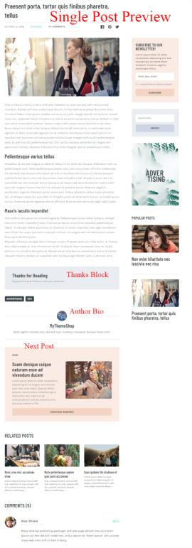 Single Post Preview - For Blog Readers