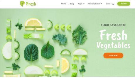 Featured Slideshow - Fresh WordPress Theme