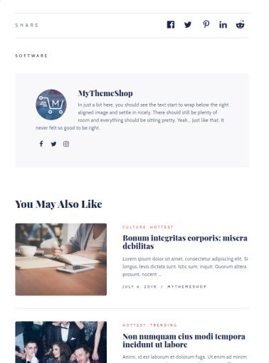 Engaging Single Post - Lifestyle Blog Theme