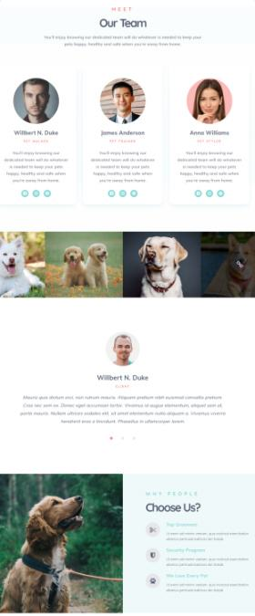 Frontpage Sections - Pets Theme