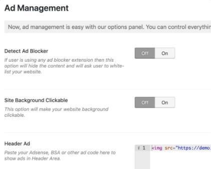 Ad Management - Designer WP Theme