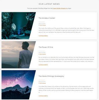 Blog Options - Journal Template
